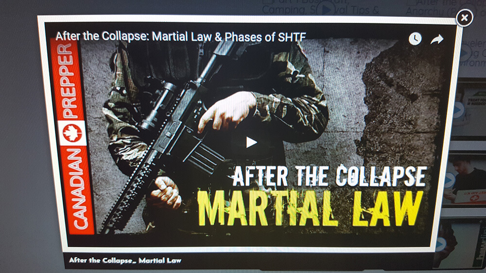 After the Collapse_ Martial Law